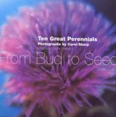 Great Perennials